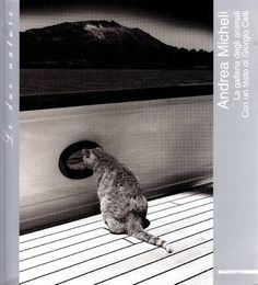 Andrea Micheli. La galleria degli animali. Franco Fontana paesaggi. Milano, Mazzotta, 2005. Catalogo di mostra, Spazio Mazzotta, Galleria d'arte-design-fotografia 2005. Numerose fotografie in nero e a colori