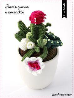 #free tutorial #amigurumi #piantegrasseuncinetto Gli schemi si www.farecreare.it