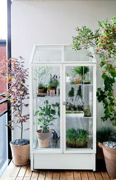 Boho Home :: Beach Boho Chic :: Living Space Dream Home :: Interior + Outdoor :: Decor + Design :: Free your Wild :: See more Bohemian Home Style Inspiration @untamedorganica :: greenhouse love.