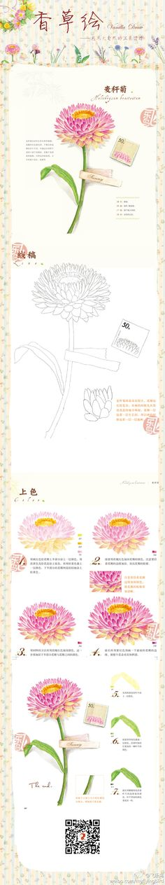 20131129104008_fdNZ5.jpeg (900×4824)