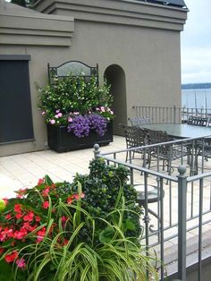 Large container gardens stand out in a large space.