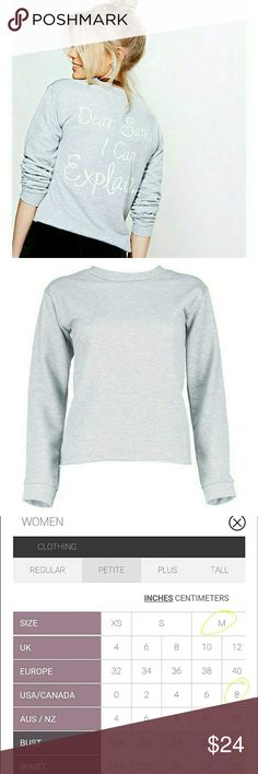 """Petite Raw Hem Christmas Sweater Holiday Top US Size 8/Medium made by Boohoo. New """"Dear Santa, I can explain"""" cute & cozy holiday sweater in grey. ASOS Sweaters Crew & Scoop Necks"""