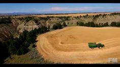 Wheat Harvest at Near Winifred, Montana 2015. !FM!.