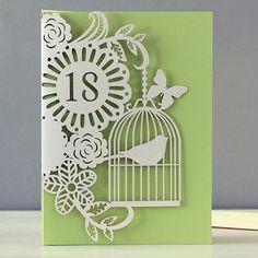 bird cage 18th birthday laser-cut card by alljoy £2.95
