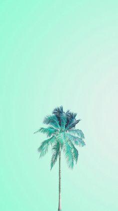 Mojito palm mint green wallpaper iphone, wallpaper for your phone, minimalist wallpaper phone, Palm Tree Iphone Wallpaper, Mint Green Wallpaper Iphone, Cute Wallpaper For Phone, Trendy Wallpaper, Tumblr Wallpaper, Screen Wallpaper, Pastel Wallpaper, Iphone Backgrounds, Phone Wallpapers