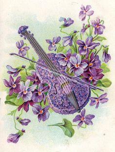 vintage violet violin