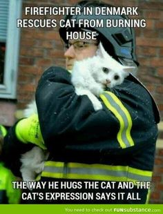 The cat's expression breaks my heart. Faith in humanity restored