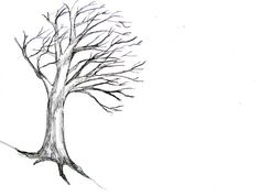 Learn To Draw How To Draw A Tree Tutorial - How To Draw A Tree: Step by step tutorial with photos showing how to draw seven different trees. Tree Drawings Pencil, Easy Drawings Sketches, Tree Sketches, Art Drawings, Drawing Skills, Drawing Techniques, Drawing Ideas, Drawing Tutorials, Drawing Tips