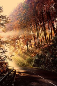 Autumn, Bükk mountains, Hungary