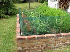 brick  Raised Vegetable Beds | RSA2552- SMALL VEGETABLE GARDEN IN BRICK RAISED BED : Asset Details ...