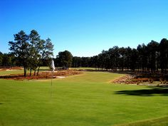 Golf Tips Irons Ball Position Info: 8189589976 Pinehurst Resort, Golf Tips, Beautiful Day, Evergreen, Golf Courses, Spa, World, Holiday Packages, Irons