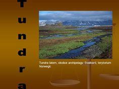 Tundra Tundra latem, okolice archipelagu Svalbard, terytorium Norwegii.> Desktop Screenshot, Geography