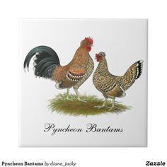 Shop Pyncheon Bantams Ceramic Tile created by diane_jacky. Poultry Breeds, Office Gifts, Color Patterns, White Ceramics, Belgium, Cake Toppers, Design, Beautiful, Products