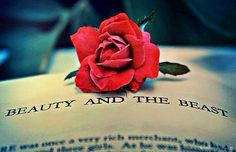 Beauty and the Beast book with rose via www.Facebook.com/DisneylandForMisfits