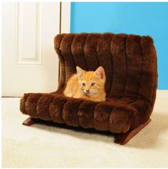Give your pet a couch of their own!