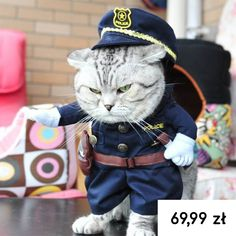 HUABEI PET COSTUME POLICE Cat, Little Dog, Police Uniform - Funny Pet Clothes Dressing Up Party * Check out the image by visiting the link. (This is an affiliate link and I receive a commission for the sales) Little Dogs, Pet Dogs, Dogs And Puppies, Teach Dog Tricks, Cheap Pets, Puppy Coats, Dog Vest, Taron Egerton, Pet Costumes