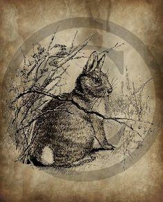 Primitive Vintage Hare Bunny Rabbit Jpeg Digital  Image Feedsack Logo for Pillows Pantry Labels Hang tags Magnets Ornies