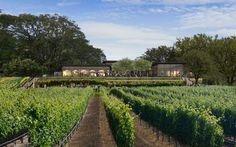 Healdsburg Hotel, Healdsburg California, California Usa, Northern California, Amangiri Resort, Sonoma Wine Country, Wellness Resort, Rustic Luxe, Real Estate Investor