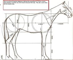 Proportion Related Keywords & Suggestions - Proportion Long Tail ...