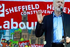 Jeremy Corbyn 'backs calls for Sheffield tree-felling work to be paused'