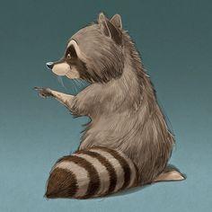 Some random Raccoon sketches...