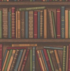 Bookshelf Multi-coloured wallpaper by Albany