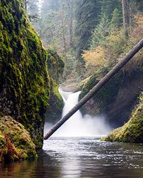 Waterfalls-Punch Bowl Falls, Columbia River Gorge