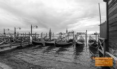 Gondolas at Sunrise in Black and White - Venice Italy
