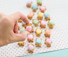hello, Wonderful - TEDDY BEAR GRAHAM COOKIES HOLDING CONVERSATION HEARTS