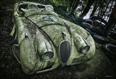 Dans Forest Punk, le photographe allemand Dieter Klein a pris des clichés de voitures vintages laissées à l'abandon dans différentes forêts.