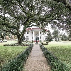 a home by the sea - Wanderlusting over the historic estates along the Mississippi gulf. Interesting fact, this area is also known as the Radish capital of the world. photo by @zioandsons