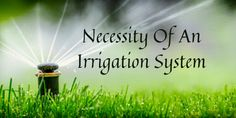 Along with watering the plants on time, irrigation is even necessary for the landscape. It is equally effective to preserve the beauty and longevity of the landscape. Big Garden, Lawn And Garden, Garden Plants, Sprinkler Irrigation, Plant Diseases, Weed Seeds, Garden Maintenance, Planting Seeds, Good Thoughts