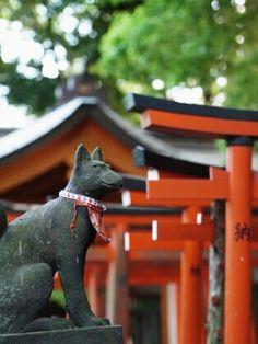 Nezu Shrine (根津神社)