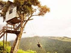 """If you have graduated from your neighborhood playground, try venturing deep into the Ecuadorian wilderness. There you'll find Casa del Arbol (also known as """"The Treehouse""""), a seismic monitoring station for the active Mt. Tungurahua volcano. The structure's real attraction is the rope swing attached to one of the tree's branches, where people are invited to ride out over the end of the world."""