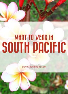 Traveling to the South Pacific? Packing list and tips all in one place! Start reading!
