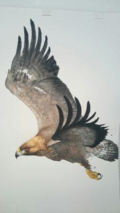 Eagle from Karl Mårtens...