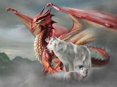 Red dragon and her friend white wolf. Fantasy Wolf, Fantasy Dragon, Fantasy Art, Dragon Wolf, Baby Dragon, Dragon King, Red Dragon, Fantasy Creatures, Mythical Creatures