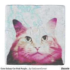 Shop Cute Galaxy Cat Purple Pink Blue White Pretty Stone Coaster created by CatLoversCorner. Cat Lover Gifts, Cat Gifts, Cat Lovers, Siberian Forest Cat, Siberian Cat, Cute Coasters, Stone Coasters, Crazy Cat Lady, Crazy Cats