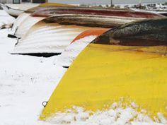 Winter Fish, Winter, Trelleborg, Winter Time, Pisces, Winter Fashion