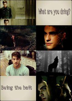 Teen Wolf Boys, Teen Wolf Cast, I Hate You, Love You, Theo Raeken, Cody Christian, Wolf Wallpaper, Wolf Moon, Sterek