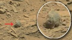 mars rover essays