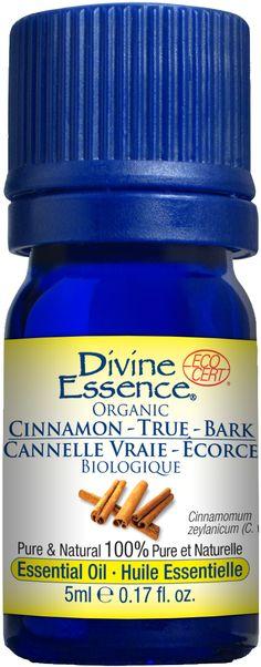 Cannelle Vraie – Écorce | Divine Essence