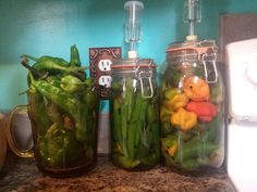 Fermenting peppers ♡♡♡