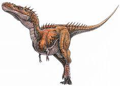 Alioramus remotus - a tyrannosaur dinosaur