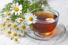 Propriedades e Benefícios do Chá de Camomila