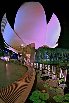 Singapore - Art Science Museum - Lotus Shaped Building - Visit http://asiaexpatguides.com and make the most of your experience in Asia! Like our FB page https://www.facebook.com/pages/Asia-Expat-Guides/162063957304747 and Follow our Twitter https://twitter.com/AsiaExpatGuides for more #ExpatTips and inspiration!