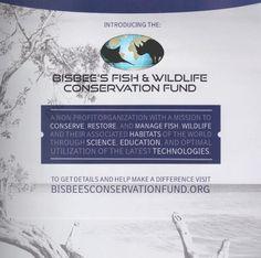 Endangered Fish, Offshore Fishing, Wildlife Conservation, Make A Gift, Habitats, Magazine, World, Natural, How To Make