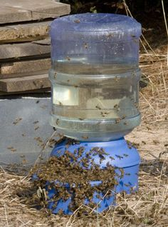 Syrup Delivery: an overview of honey bee feeders – Cookeville BeeKeepers