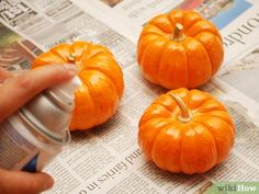 How to Paint a Pumpkin. When Halloween or the fall season comes knocking, painting a pumpkin is a creative and fun craft that the whole family can enjoy -- without the mess of making a jack-o'-lantern. How To Fade, Pumpkin Contest, Painted Pumpkins, Book Projects, Happy Halloween, Halloween Tricks, Halloween Ideas, A Pumpkin, Painting Tips