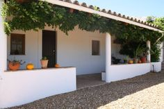 House in Curral Boeiros, Portugal. CASA PAZ DO BARROCAL is located 6 KMs in the north of the beautiful town of Tavira. On the hill beside a traditional portuguese hillside country village you can enjoy the pure local nature and surroundings. This is the right place for a retreat a...